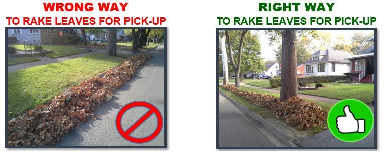 Leaves in Parkway Do's and Don'ts