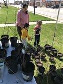 Children picking trees